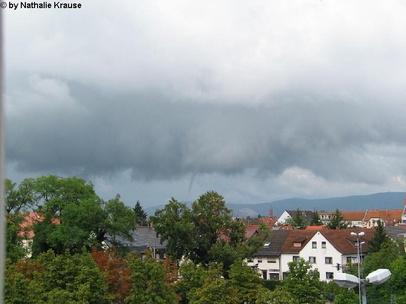 Mannheim 3